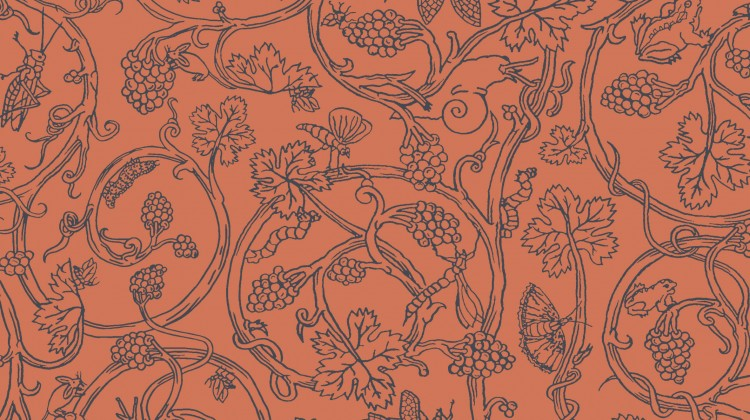 Cole & Son - Vivienne Westwood - Insects 86-10036 HR